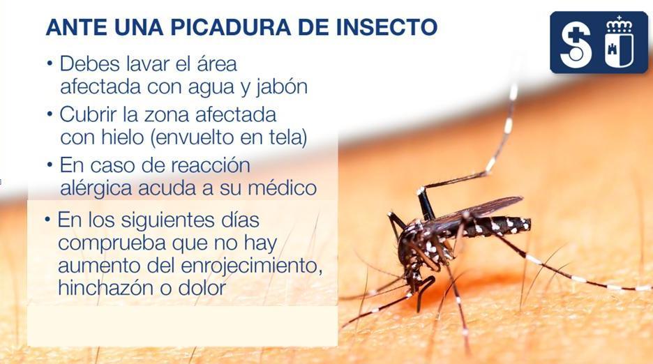 Cartel Consejos de Verano 7 (Archivo PDF)