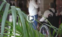 Enfermedades raras. En Castilla-La Mancha: Apoyo y Detección Precoz